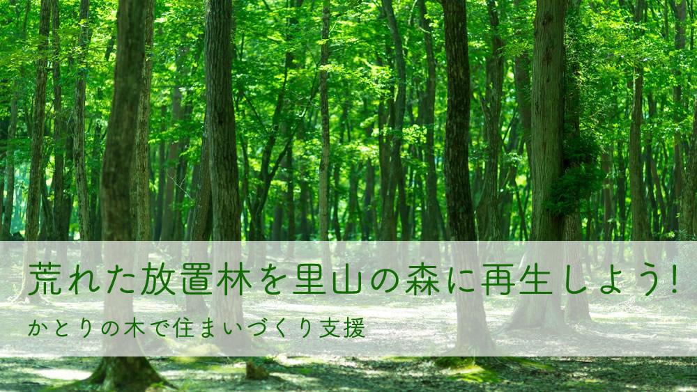 荒れた放置林を里山の森に再生しよう!かとりの木で住まいづくり支援