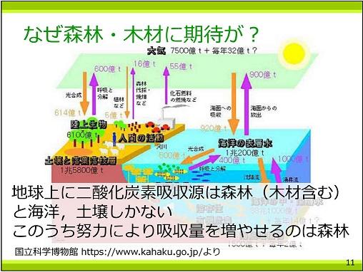 P11 二酸化炭素吸収源25%