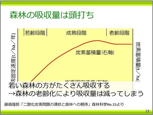 p13 森林の吸収量は頭打ち25%