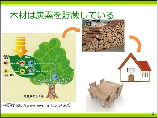 p16 木材は炭素を貯蔵している25%
